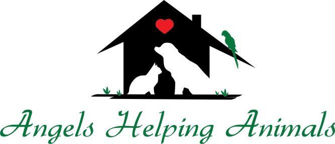 Angels Helping Animals