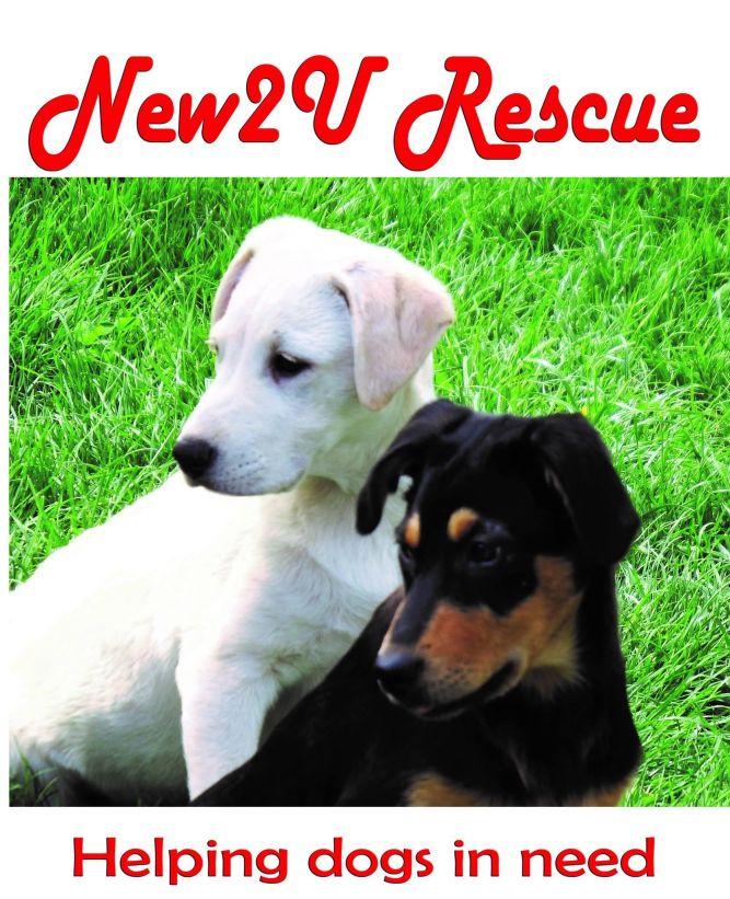 New2U Rescues