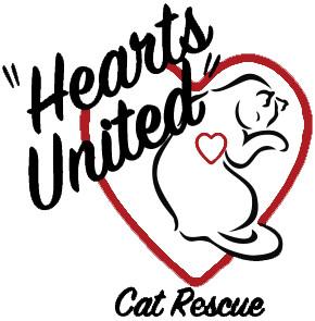 Hearts United Cat Rescue