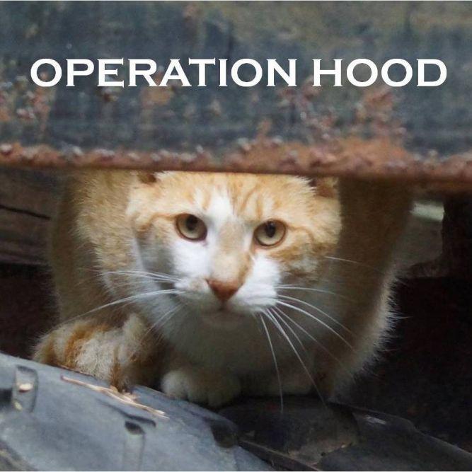 Operation Hood Inc.