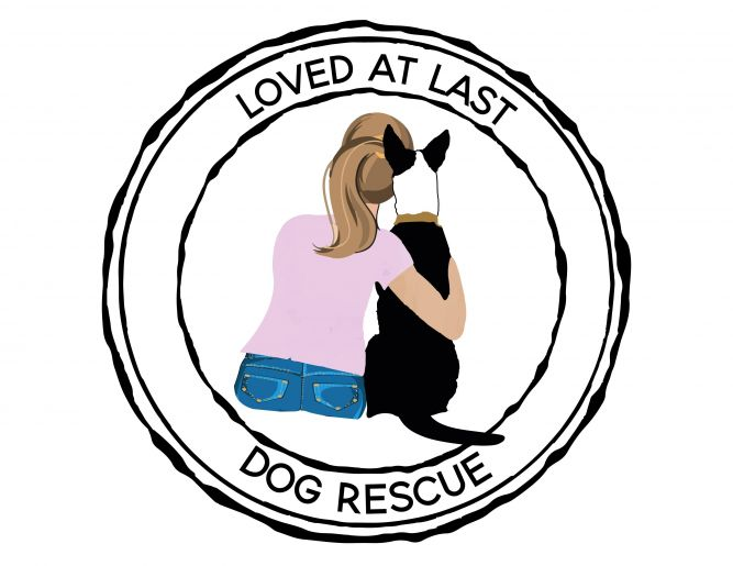 Loved At Last Dog Rescue