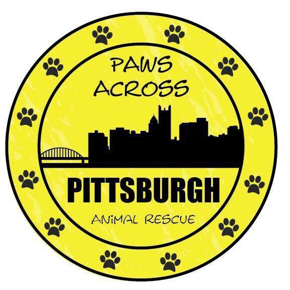 Paws Across Pittsburgh