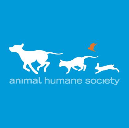 Pets For Adoption At Animal Humane Society Woodbury In Woodbury Mn Petfinder