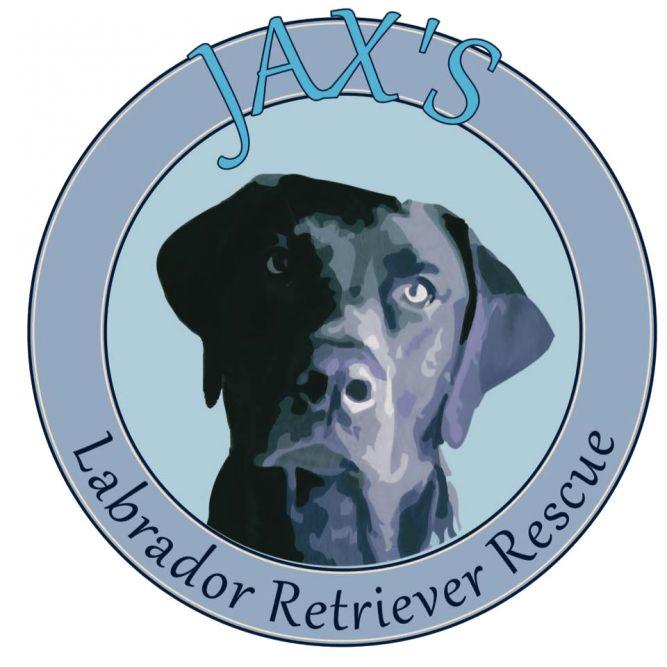 Jax's Labrador Retriever Rescue