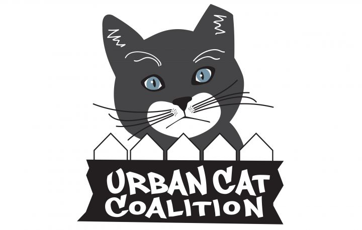 Urban Cat Coalition | Milwaukee, WI