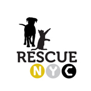 RescueNYC