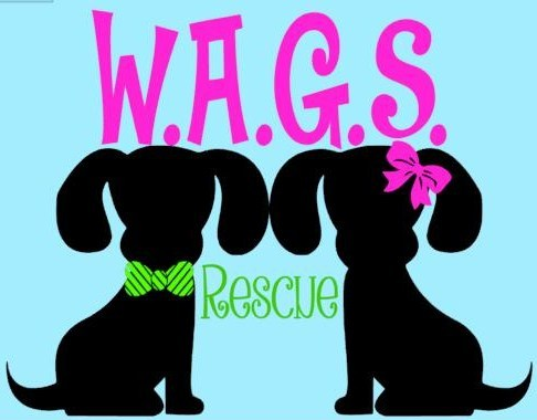 WAGS Rescue