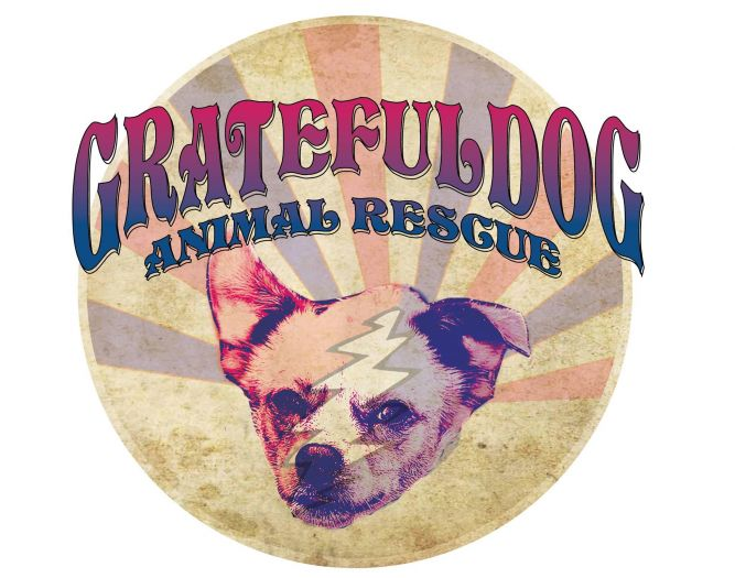 The Grateful Dog Animal Rescue