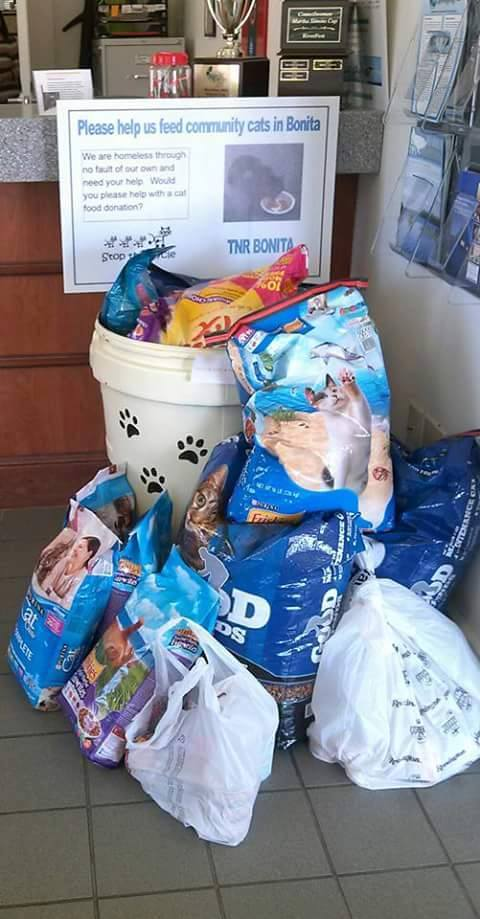 Community Cat Food Bank