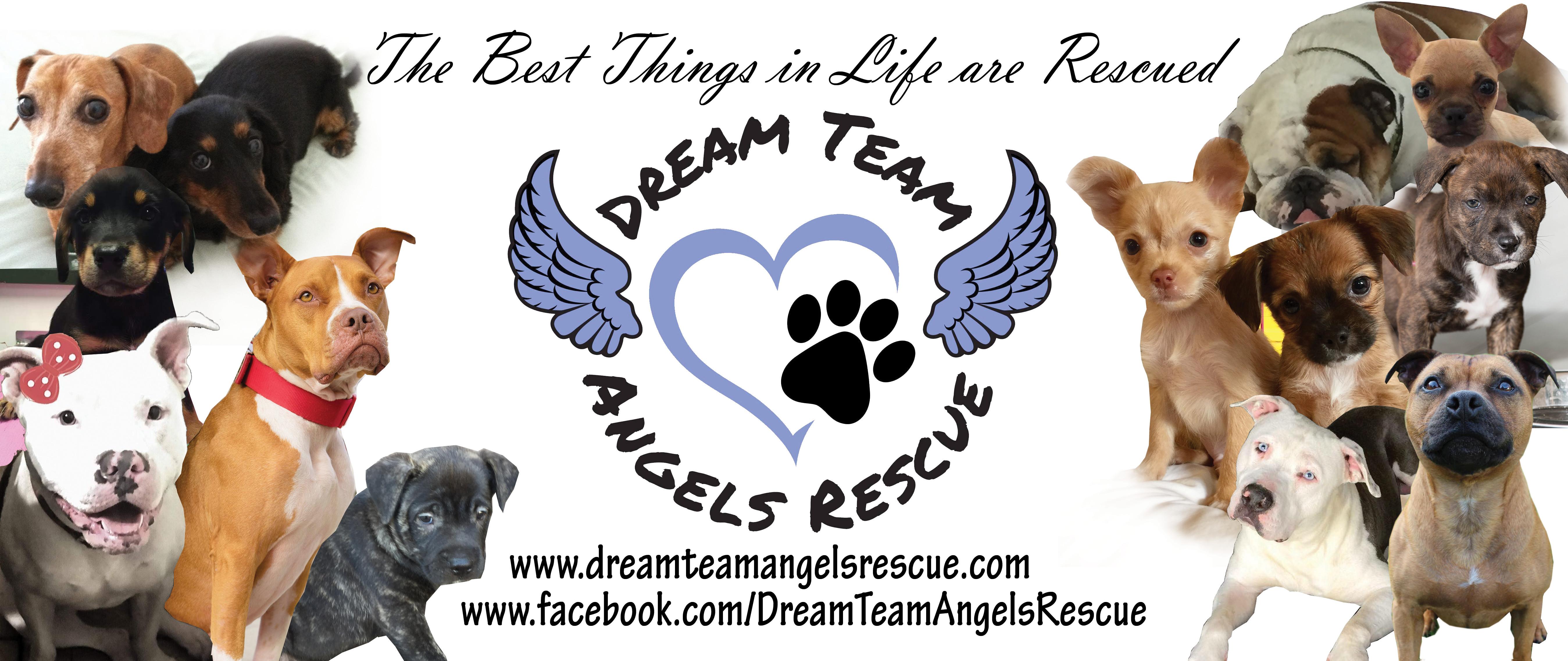 Dream Team Angles Rescue