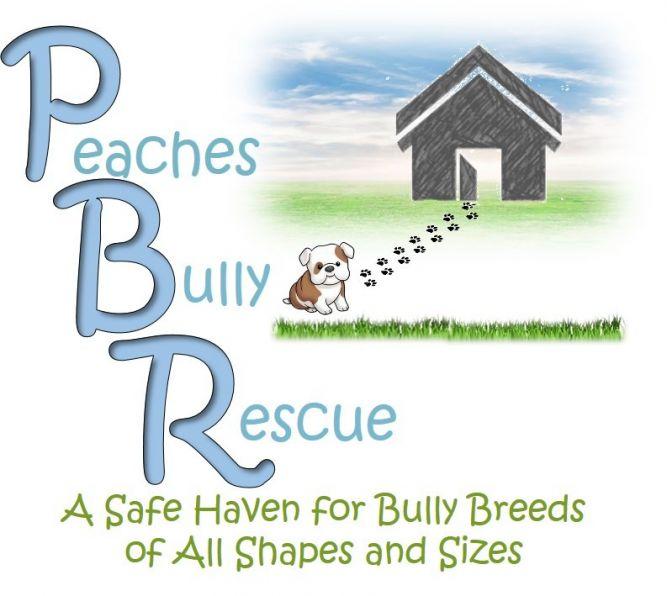 Peaches Bully Rescue
