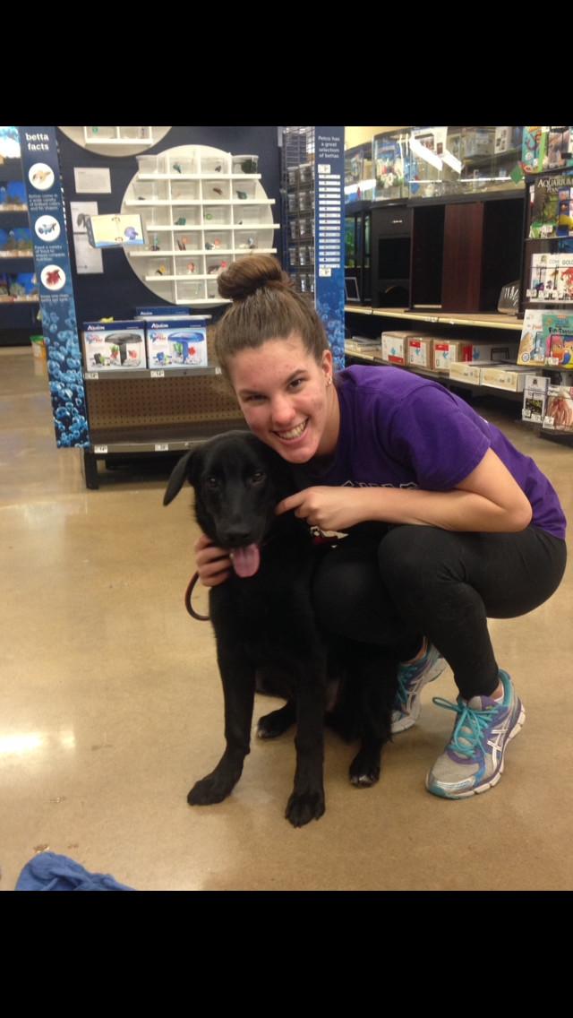 Promises Animal Rescue