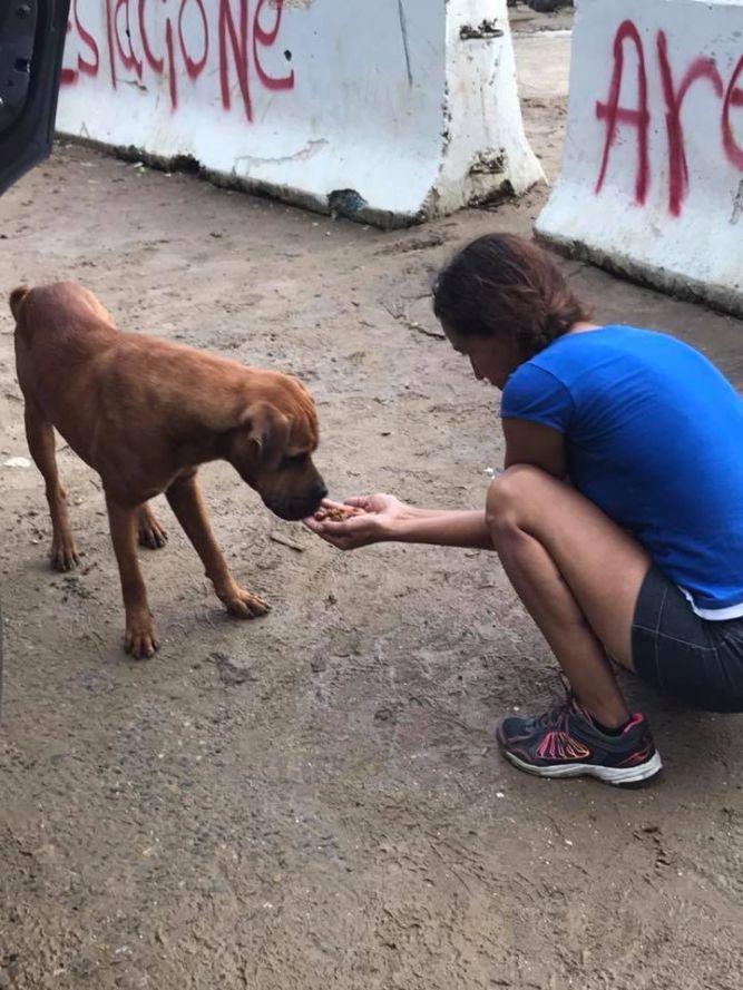 Compassion Kind