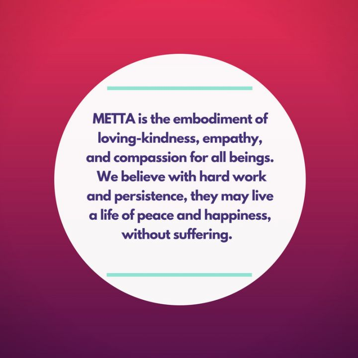 The meaning behind METTA