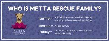 Who is Metta Rescue Family?