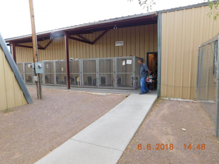 Socorro Shelter Large Dog Kennels