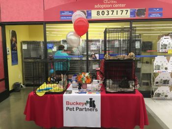 Adoption event at Petsmart Hilliard, Ohio