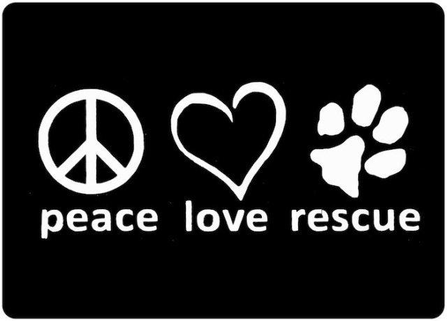 Fluff Animal Rescue Inc