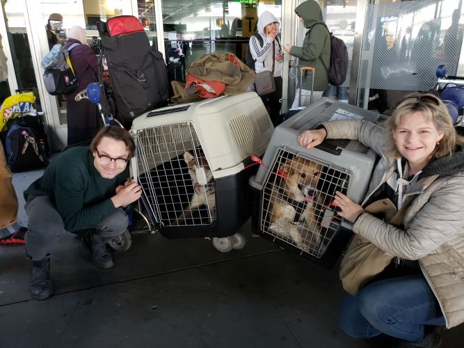Furry Tales International Rescue Team