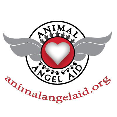 100% of Proceeds donated to Homeless Animals
