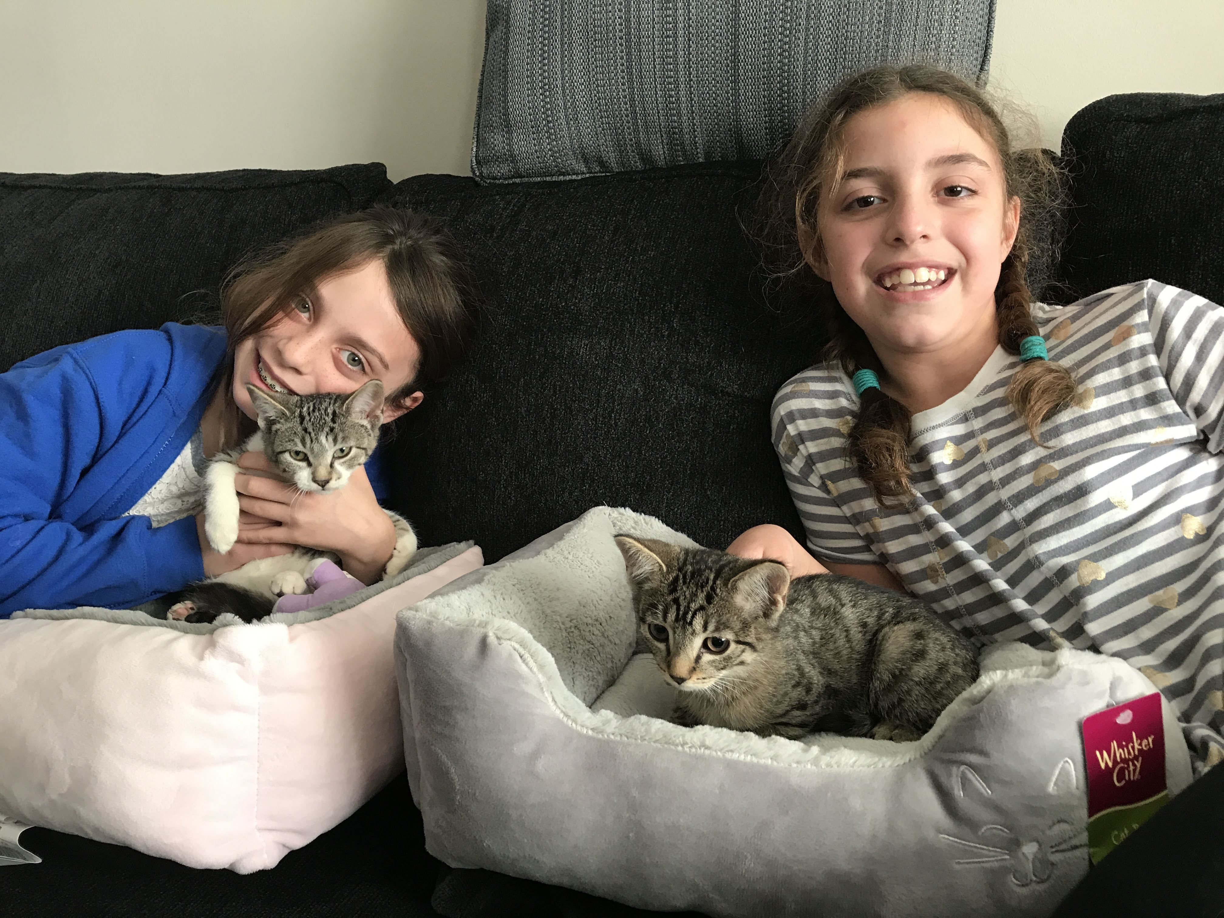 Be an Animal Angel Ambassador like Sophia & Ava