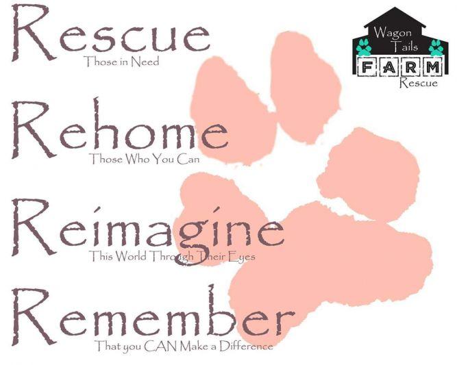 Wagon Tails Farm Rescue