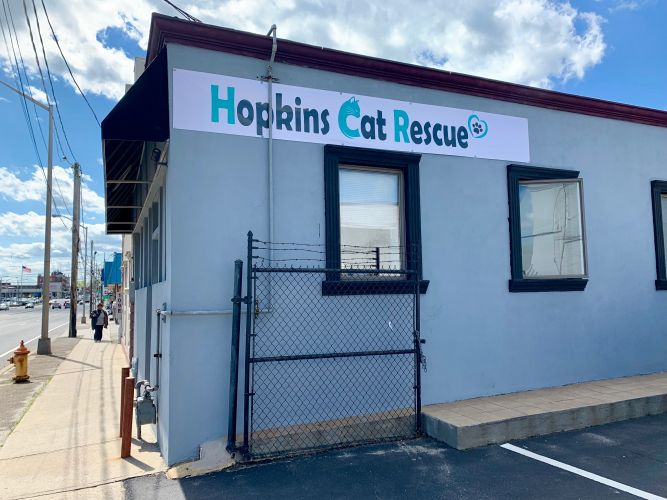 Hopkins Cat Rescue
