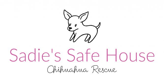Sadie's Safe House Chihuahua Rescue