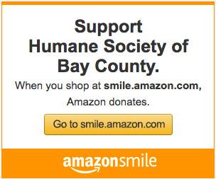 Support Us on Amazon