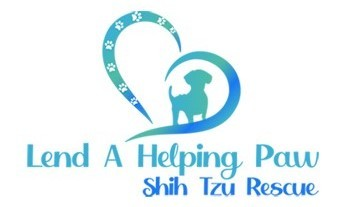 Making a difference one dog at a time