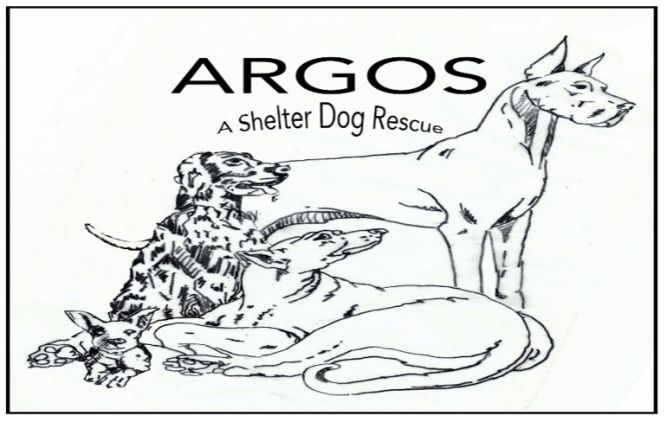 Argos, A Shelter Dog Rescue