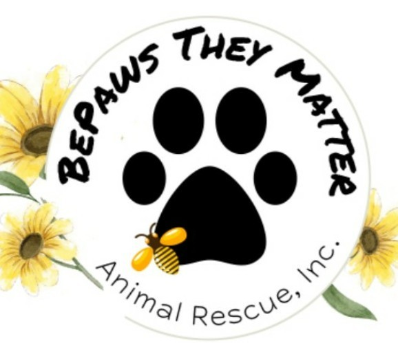 Rescuing the overlooked BePaws They Matter??