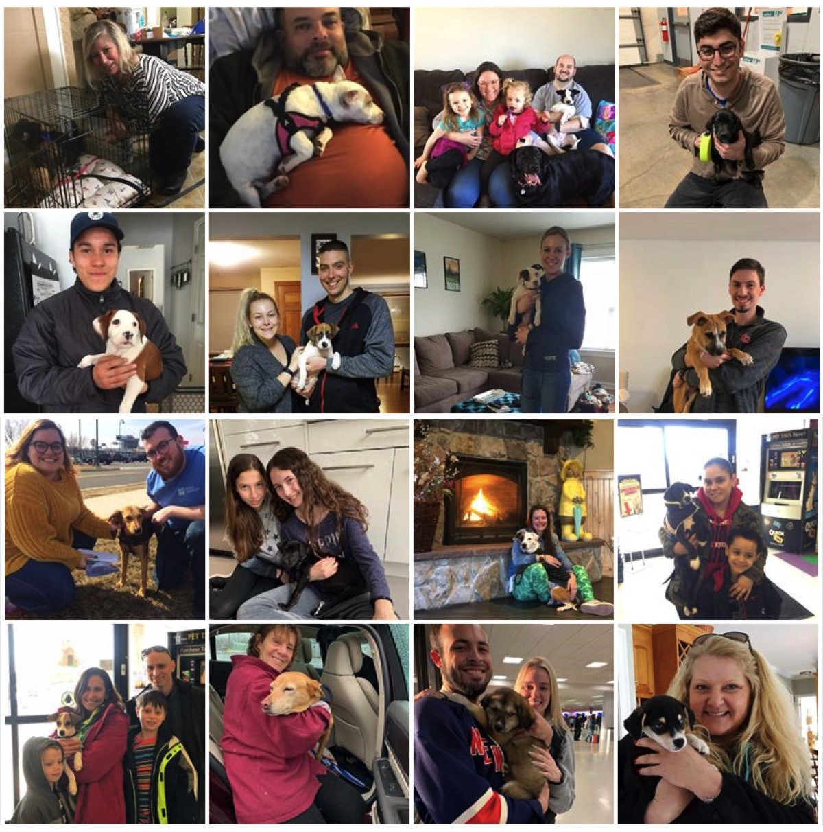 We celebrated 150+ adoptions in 2019!