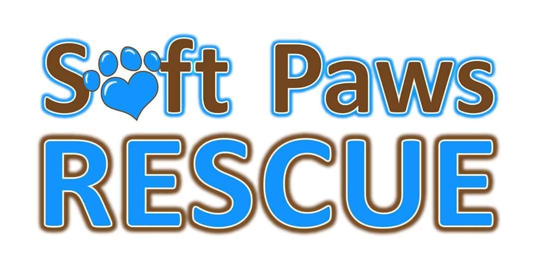 Our Wonderful Logo