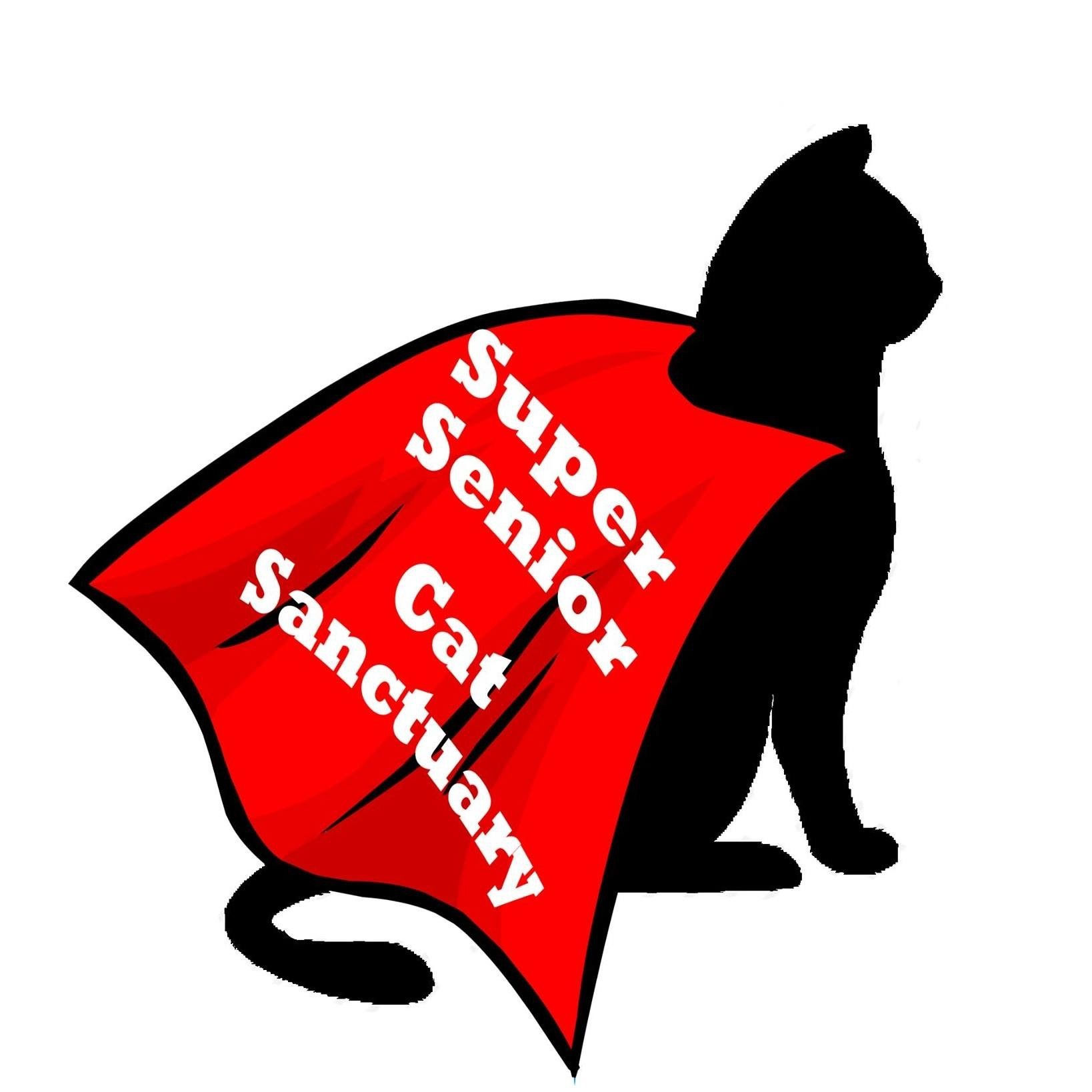 Super Senior Cat Sanctuary