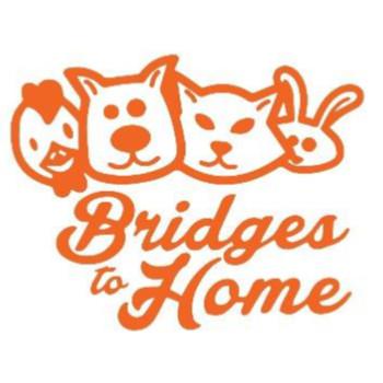 Bridges to Home