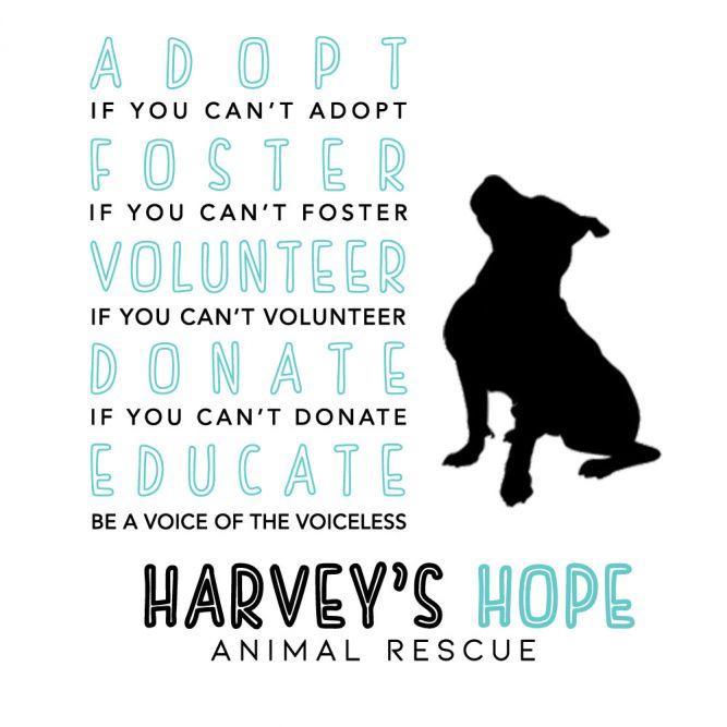 Harvey's Hope Animal Rescue