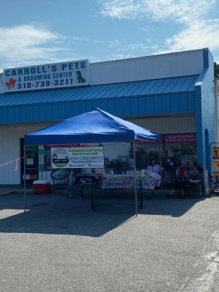 Adoption Fair at Carroll's Pets in Lumberton, NC