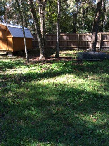 Shaded fully fenced acre w/ dog runs