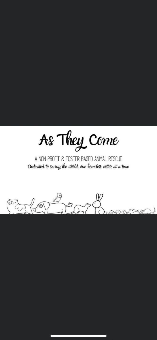 As They Come Animal Rescue