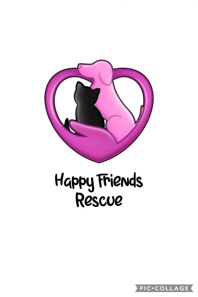 Happy Friends Rescue