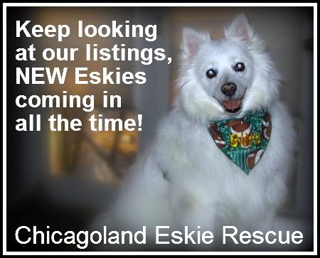 Eskies Coming in!