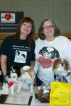 Japanese Chin Dog: Foster Homes Needed