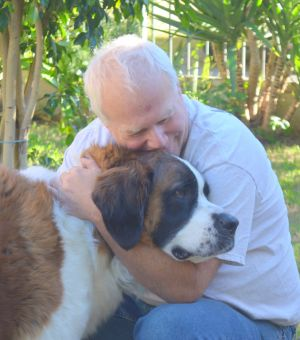 Sunny Saints Southern California Saint Bernard Rescue is looking for foster hom