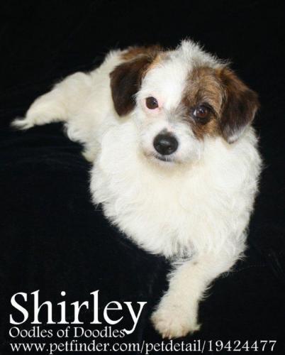 NJ - Shirley