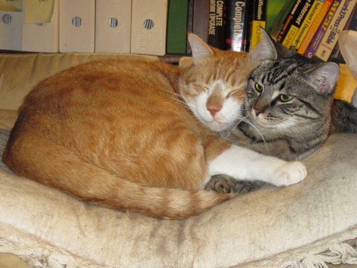 Jasper & Eva 2