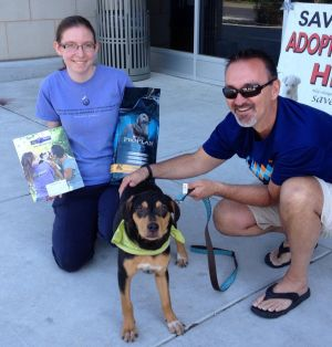 Chance - ADOPTED!!!