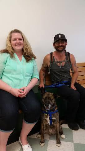 Stewie-Adopted!, an adopted Dutch Shepherd & Akita Mix in Detroit, MI