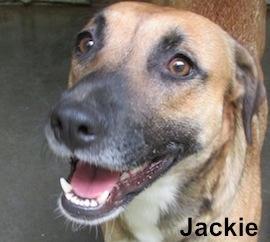 Jackie (twin to Jill)
