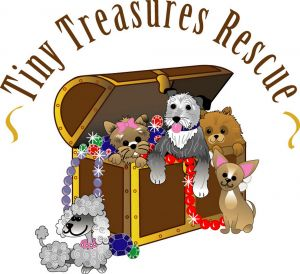We have no available dogs right now Please go to wwwtinytreasuresrescuecom to read about our curr